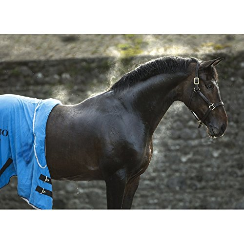Horseware Rambo Dry Rug Supreme – Blue/Black/White, Groesse:M - 5