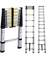 BUCKETLIST® Portable Wall Reclining and Foldable Compact 15-Steps Telescopic 4.4 m Aluminium Ladder with Platform (Black; Large)