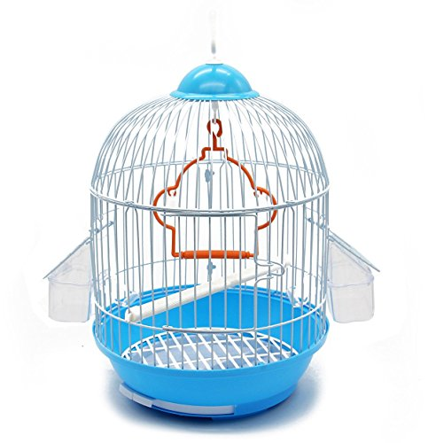 cage oiseau pas cher