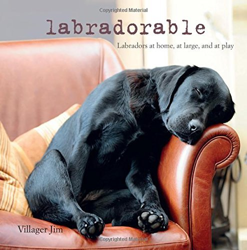Labradorable: Labradors at home, at large, and at play by Villager Jim (July 31, 2015) Hardcover
