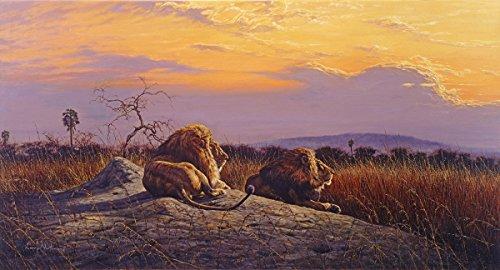 'Kings'-Print, anerkannter Simbabwe Künstler Larry Norton-Giclée Druck auf Leinwand-Größe 1170mm x 610mm-Druck & Versand aus Südafrika-zugelassenen Verkäufer Tiger Print Shift