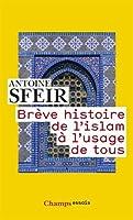 Brève histoire de l'islam à l'usage de tous © Amazon