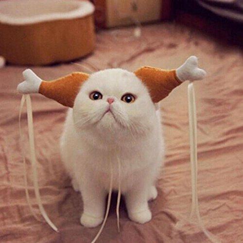 Kostüm Truthahn Huhn Cosplay für Hunde Katze Halloween Karneval mit Ohren (S) (Baby Huhn Halloween Kostüme)