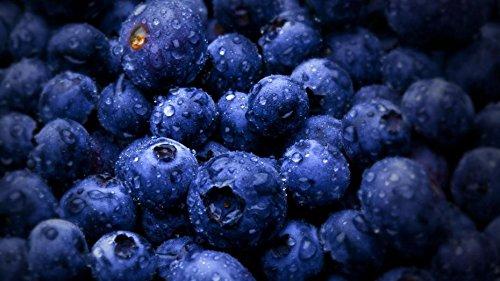 100 Blueberry Graines de fruits de fruits tropicaux Bon goût entretien intérieur, extérieur Facile Disponible