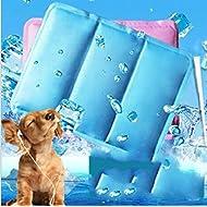 auto-rafraichissante pour animal Chilly Gel Confort Tapis pour chien double PVC anti-fuites Glace de refroidissement Pad 27,9x 38,1cm