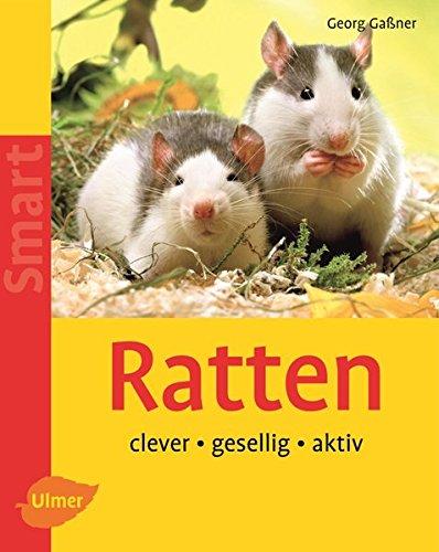 Ratten: Clever - gesellig - aktiv (SMART)