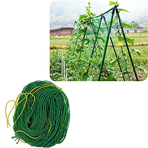 DOMDIL PflanzennetzStütznetzGartennetzKlettergerüstNylon-GitterNetzRanknetzfürGurkenUnterstützungfürKletterpflanzen,RebeundVeggieSpalierNetz, 1.5X4.5m,grün