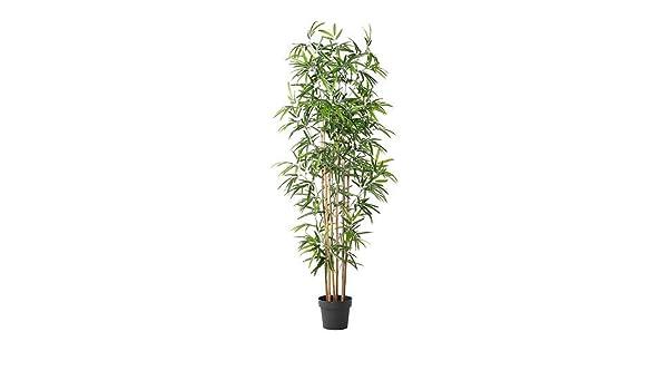 Ikea Fejka Kunstliche Topfpflanze Bambus 21 Cm Amazon De Kuche