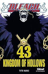 Bleach Edition simple Kingdom of Hollows