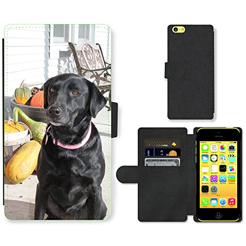 Grand Phone Cases PU Leder Leather Flip CASE Cover HÜLLE ETUI Tasche Schale // M00142163 Hunde Fall-Herbst-Haustiertier, Welpe // Apple iPhone 5C (5c Iphone Fall Welpe)