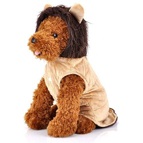 austier Katze Hund Kleidung Cosplay Kostüm Hund Löwe Kostüm Hundemantel Trim Hooded (Verwenden Sie Ihre Eigene Kleidung Halloween Kostüme)