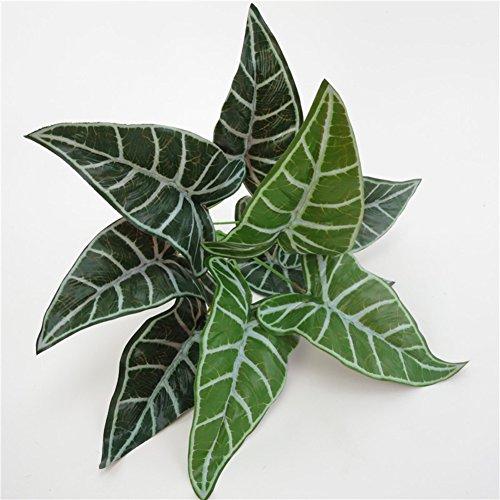 Danigrefinb 1 Stück Künstliche Alocasia Blätter Gefälschte Pflanze Home Office Party Fotografie Decor