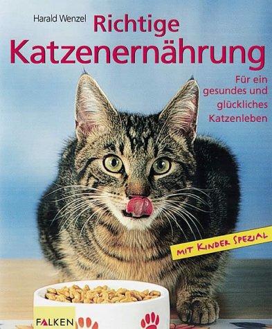 Richtige Katzenernährung