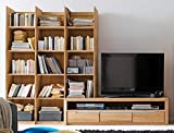 Medienwand Pisa 20 Eiche Bianco massiv Lowboard Regal Wohnwand TV-Wand TV-Möbel, Ausführung:Regal Links