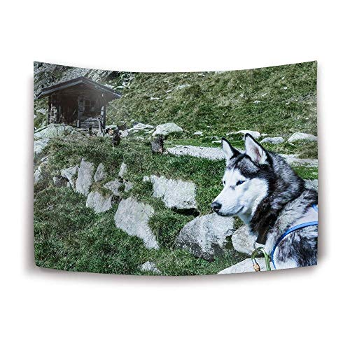 Daawqee Art Wandteppiche Wall Hanging, Husky Dog Muzzle Light Wall Wandteppiche Home Decorations for Bedroom Dorm Decor in 60X40 Inches