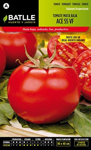 Semillas-Batlle-Tomate