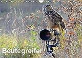 Beutegreifer (Wandkalender 2018 DIN A4 quer): Faszination Greife und Eulen (Monatskalender, 14 Seiten ) (CALVENDO Tiere) [Kalender] [Apr 04, 2017] Jordan, Diane