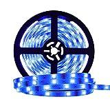 LED Strip LED Streifen RGB 5M LED Licht Streifen SMD 5050 300 LEDS mit 44-Tasten IR Fernbedienung 16 mehrfarbige Wasserdicht flexibel LED Schlauch für Zuhause Küche Weihnachten Indoor Dekoration