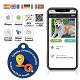 QR4G.com GPS Placa identificativa inteligente para mascotas (perros y gatos) con QR GPS