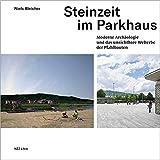 Steinzeit im Parkhaus: Moderne Archäologie und das unsichtbare Welterbe der Pfahlbauten - Niels Bleicher