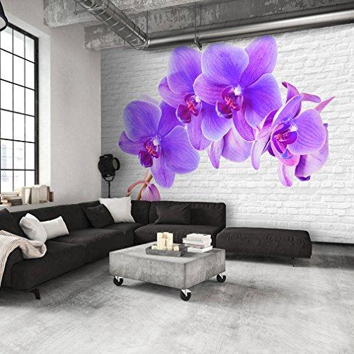 decomonkey | decomonkey | Fototapete Blumen Orchidee 250x175 cm XL | Tapete | Wandbild | Bild | Fototapeten | Tapeten | Wandtapete | Wanddeko | Wand Dekoration WandDekoration | FOA0019a5XL