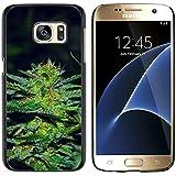 Graphic4You Fumador hierba marihuana Carcasa Funda Rigida para Samsung Galaxy S7