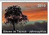 Bäume im Taunus - Jahreszyklus (Wandkalender 2019 DIN A3 quer): Stimmungsvolle Bilder von Bäumen aus dem Taunus im Laufe eines Jahres (Monatskalender, 14 Seiten ) (CALVENDO Natur)