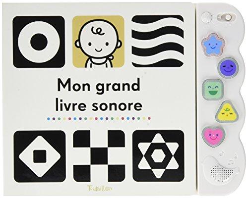 Mon Grand Livre Sonore Les Premieres Musiques De Bebe