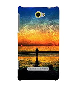 printtech Nature Sunset Scenery Abstract Back Case Cover for HTC 8S