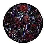Moooi Carpets Fool's Paradise Teppich Ø350cm, schwarz rot blau