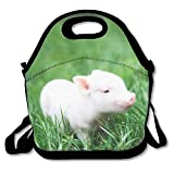 Cute Baby Pig Printed Portable Lunch Bag Carry Case Tote with Zipper Strap Box Cooler Container Bags Picnic Outdoor Travel Fashionable Handbag Pouch for Women Men Kids Girls