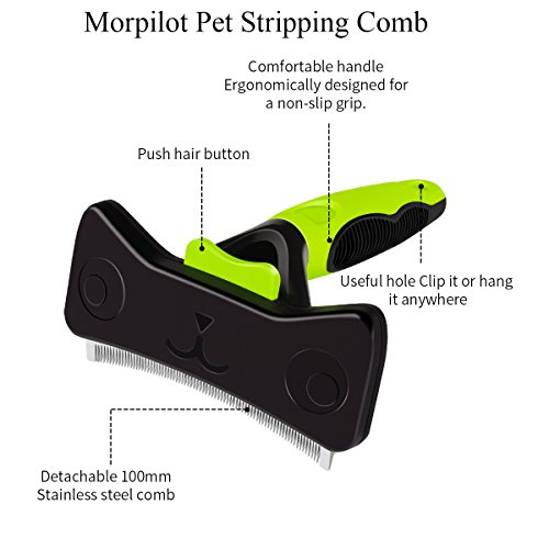 Zoom IMG-1 morpilot spazzola autopulente per cani