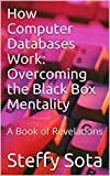 How Computer Databases Work: Overcoming the Black Box Mentality: A Book of Revelations (English Edition)