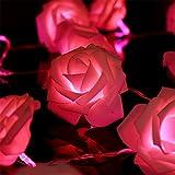 Homedecoam 20 LED Rosa Lichterkette Leuchte Batteriebetrieb für Party Zimmer Weihnachten Hochzeit Beleuchtung Deko Rot