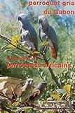 le perroquet gris du gabon et les autres perroquets africains