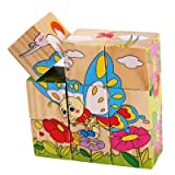 9 Piece Colorful Wooden Block Picture Puzzle for Toddlers and Small Children (Insect Theme)