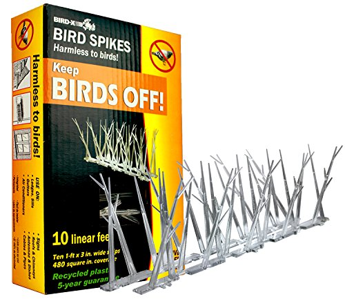 Bird-X Kit professionnel anti-oiseaux en plastique à pics resserrés 3 m