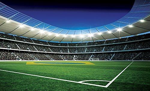 foto-tappezzeria-fotografica-poster-immagini-stadio-da-calcio-palla-1213-sfondo-blu-carta-254-cm-lar