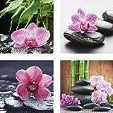 Artland Qualitätsbilder | Glasbilder Deko Glas Bilder 30 x 30 cm mehrteilig Orchidee Asien Entspannung Relax Zen Steine Bambus