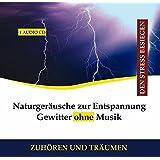 Naturgeräusche zur Entspannung Gewitter ohne Musik CD Wind Regen - Gewittergeräusche, Gewitter Geräusch