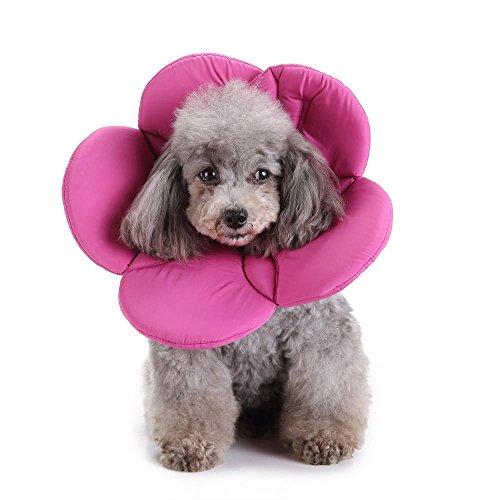 Doublehero Haustier Elisabethanischen Kragen,Hund Katze Einstellbare Wundheilung E-Kragen Weichen Kegel,Kleintiere Nackenschutz Kissen (M, Lila)