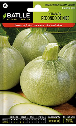 Batlle vegetable seeds – Courgette redondo de Niza (Seeds)