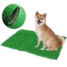 Bureze - Alfombrilla de Inodoro para Perro, Gato, para Interior o Interior, diseño