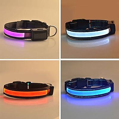Solar Ladegerät Hundehalsbänder USB Leuchthalsband LED Hundehalsband mit Leucht- und Blinkmodus Solarenergie S/M/L Rot/Blau/Pink/Weiss Nylon Verstellbar