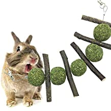 Comida Juguetes para Conejo Hámster Pelota de Ejercicio Chinchilla Rata Loro Hierba Apple Stick Snakcs (