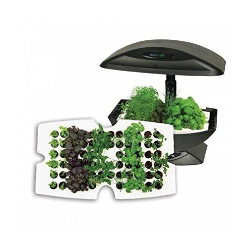Galleria fotografica Garden Starter - Kit Vassoio germinazione 66 semi per Aerogarden
