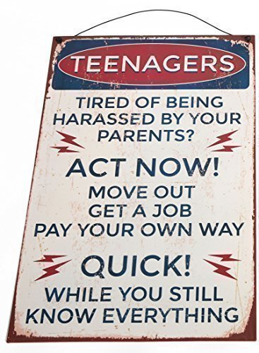 panneau-vintage-retro-rustique-metal-slogan-teenager-act-now-humour-amusement