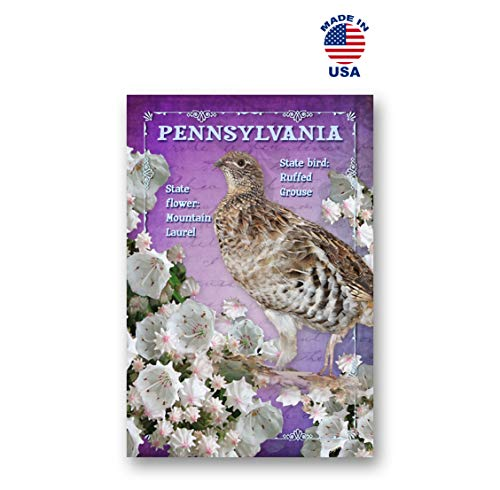 PENNSYLVANIA Postkartenset, Vogel und Blume, 20 identische Postkarten PA State Symbols Postkarten Hergestellt in den USA.
