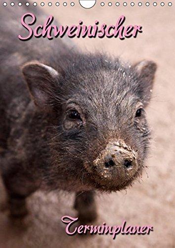 Schweinischer Terminplaner (Wandkalender 2019 DIN A4 hoch): Terminplaner mit kleinen und großen Schweinen (Planer, 14 Seiten ) (CALVENDO Tiere) (Planer Schwein)