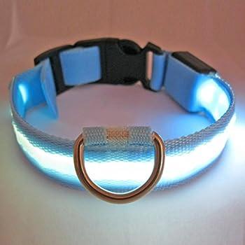 Namsan Collier de chien LED Flashing Lights Dog Blue Collar Avec White Light - Grand